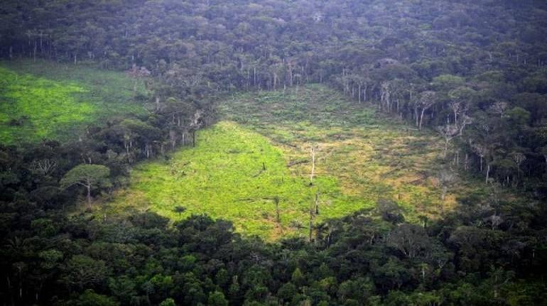 التحذير من وصول الغابات إلى منعطف مناخي حاسم بحلول عام 2050 - ازدياد انبعاثات الغازات الدفيئة - تغير المناخ وانبعاث غاز ثاني أكسيد الكربون
