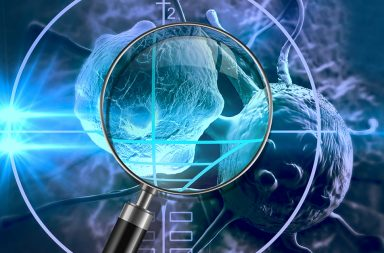 السرطان: الجهاز المناعي يهاجم الأورام من بُعد - كيف يعمل الجهاز المناعي للحد من تطور الورم - النشاط الزماني- المكاني للخلايا اللمفاوية التائية