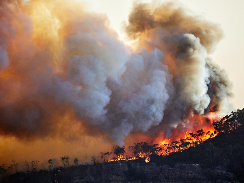 عشر نصائح عليك معرفتها للتعامل مع دخان حرائق الغابات