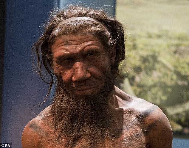 يبدو أننا لسنا السبب بانقراض النياندرتال ، وهذا هو سبب اختفائهم