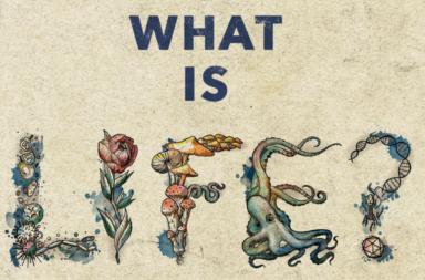 ما تعريف الحياة؟ تنوعها الواسع يتعارض مع تعريفها البسيط - صياغة تعريف شامل للحياة - لماذا يود العلماء صياغة تعريف للحياة؟