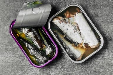 ما فوائد تناول السردين وهل هو آمن - الفوائد الغذائية المترتبة على إدخال السردين في النظام الغذائي - فوائد تناول سمك السّردين