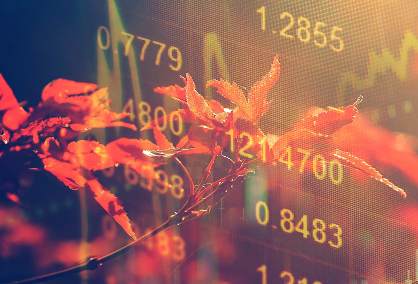 أكتوبر: شهر تعثر الأسواق - الأشهر المخيفة في التقويم المالي - ركود مالي وانهيار غير متوقع لسوق الأسهم - عواقب شهر أكتوبر على الاقتصاد