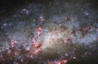 تصوير نواة مزدوجة نادرة جدًا في مجرة قريبة - قلب مزدوج نادر في مجرة الشرنقة Cocoon Galaxy القريبة - مجرة حلزونية مزدوجة النواة
