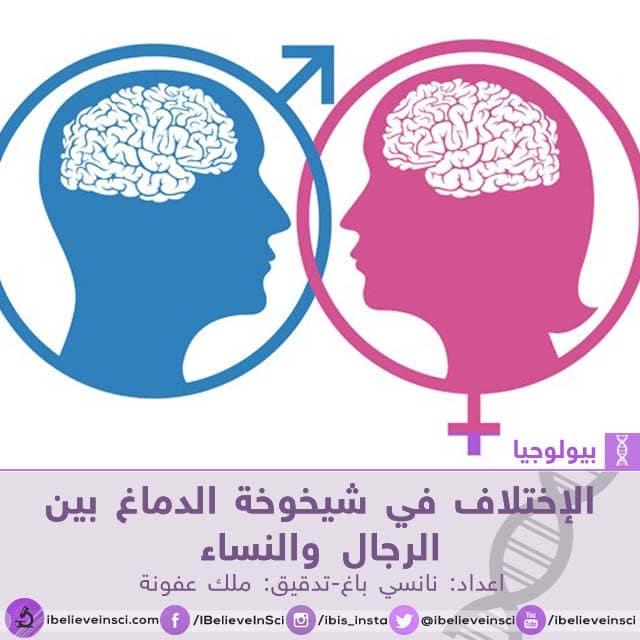الإختلاف في شيخوخة الدماغ بين الرجال والنساء