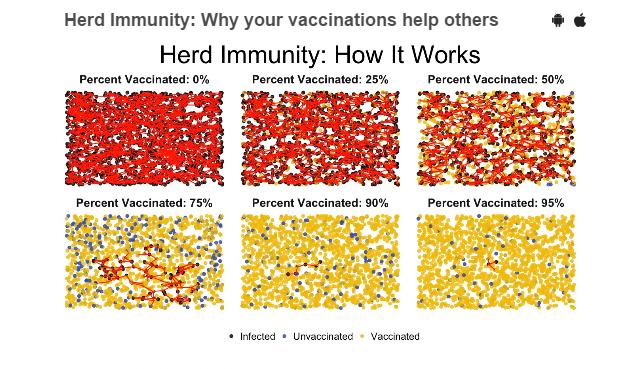 مناعة القطيع او المناعة الجماعية ، كيف تعمل ؟