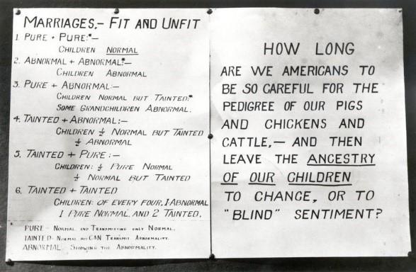 مخطط يُظهر أنواع الزواج، عُرض في معرض كانساس الحر، 1927