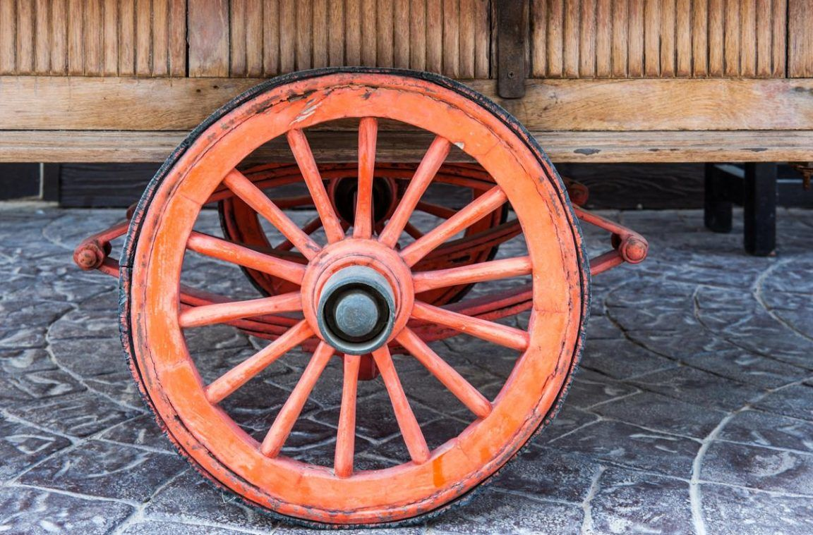 كيف تم اختراع العجلة ؟ - أنا أصدق العلم