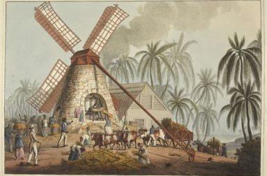 كيف كانت صناعة السكر في البحر الأبيض المتوسط ؟ ما التأثير الذي أحدثه إنتاج السكر وزراعة قصب السكر على الإقتصاد في القرن الثامن عشر؟