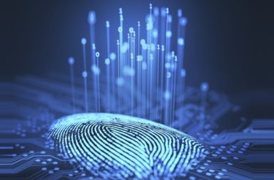 لماذا يجب أن تهتم الشركات بالأمن السيبراني - بناء خطوط الدفاع الرقمية - أمن المعلومات - الحفاظ على خصوصية بيانات الشركات - الأمن الرقمي