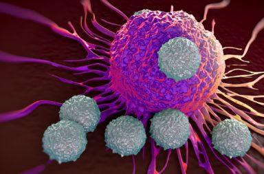مقاربة حصان طروادة في القضاء على الخلايا السرطانية من دون اللجوء إلى الدواء - حرمان الخلايا السرطانية من الأحماض الأمينية