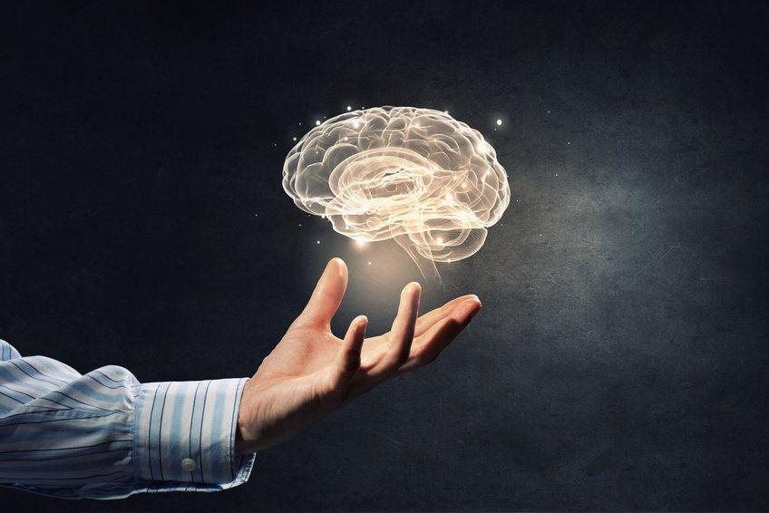 ما مصدر التفكير الأخلاقي في الأدمغة البشرية؟