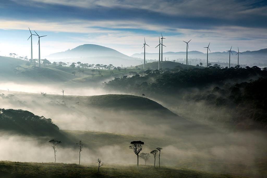 هل سنتمكن من توفير كامل احتياجاتنا من الطاقة عبر المصادر المتجددة بحلول 2050؟