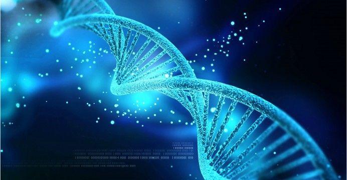 ما هي الهندسة الوراثية ؟