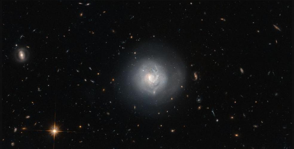 تُسمى هذه المجرة Mrk 820، وتصنف بأنها مجرة عدسية. يحيط بها عدد كبير من أنواع المجرات الأخرى مثل المجرات البيضوية والحلزونية