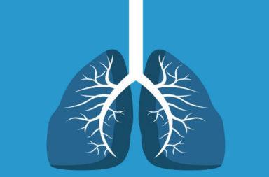 7 طرق طبيعية لتنظيف رئيتيك - أمراض صدرية مزمنة كالربو والتليف الكيسي والانسداد الرئوي المزمن - استنشاق الهواء الملوث ودخان السجائر - تنظيف الرئتين