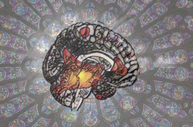 تمكن الباحثون من تحديدات المواقع في الدماغ المسؤولة عن الدين والمعتقدات الروحانية - اكتشف الباحثون أخيرًا مصدر الروحانية والتدين في الدماغ