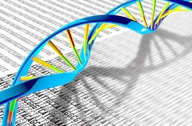 اكتشاف العملية المعقدة لإصلاح الحمض النووي - الحمض النووي الريبوزي منقوص الأكسجين (DNA) التالف في أنوية الخلايا - ثبات الجينوم