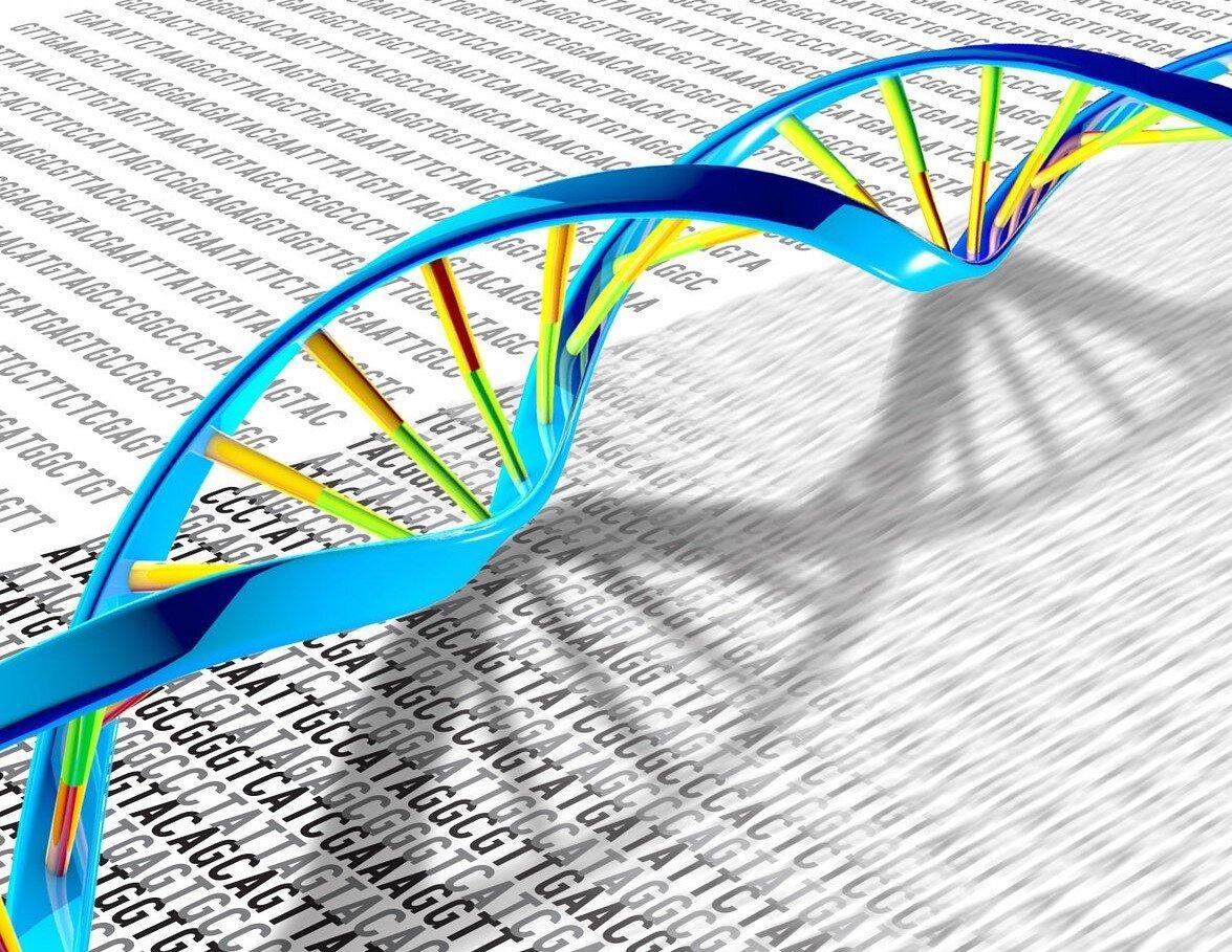 اكتشاف العملية المعقدة لإصلاح الحمض النووي