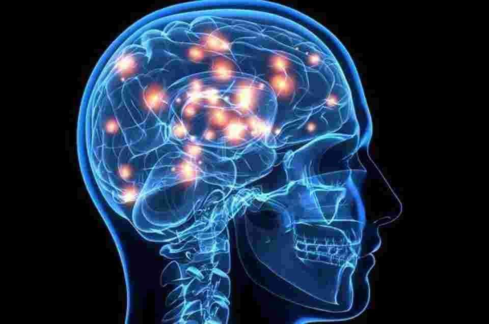 ما هو التهاب الدماغ ؟