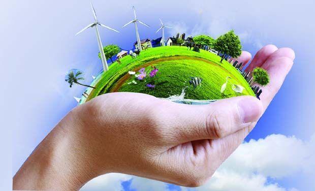 أكثر عشرة أفكار جنونًا بخصوص البيئة