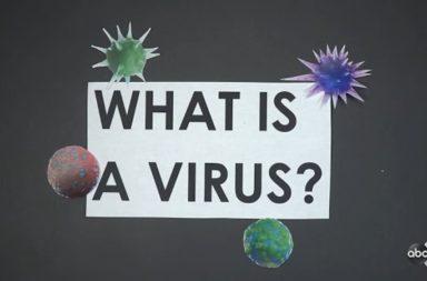 ما هي الفيروسات ؟ وكيف اكتشفت؟ - طفيليات مجهرية أصغر من الجراثيم - كيف تتكاثر الفيروسات؟ - هل الفيروس كائن حي؟ - الحمض النووي الفيروسي