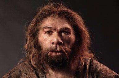 العثور على جمجمة في اليونان أثارت الجدل حول الهجرة المبكرة للبشرية هجرة الإنسان العاقل المبكرة جمجمة مكسورة عثر عليها في اليونان