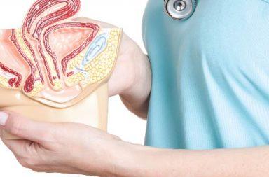 ما هي أعراض هبوط الرحم ؟ وكيف يمكن علاجه؟ - مشكلة صحية تؤدي إلى هبوط الرحم نحو المهبل أو عبره - ضعف عضلات قاع الحوض وأربطته