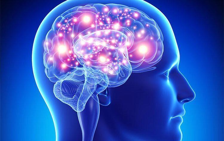 اكتشاف الجينات المسؤولة عن شيخوخة الدماغ
