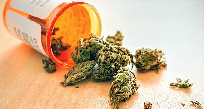 ما هي الآثار الجسدية والنفسية لتعاطي الماريجوانا (الحشيش) - خليط رمادي مخضر من أزهار القنب المزروعة المجففة - سجائر الحشيش الملفوفة