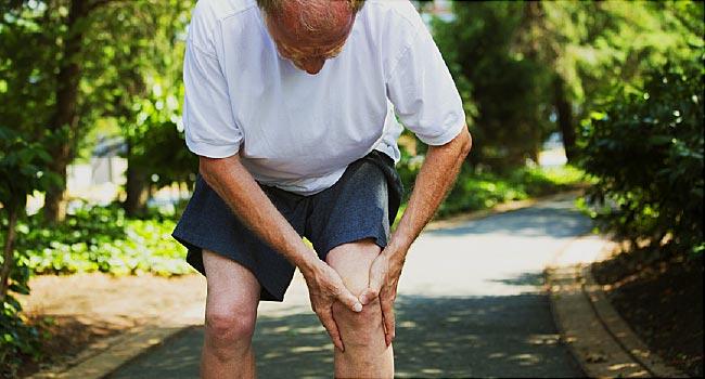 إعادة نمو غضروف الركبة: دراسات واعدة على الحيوانات