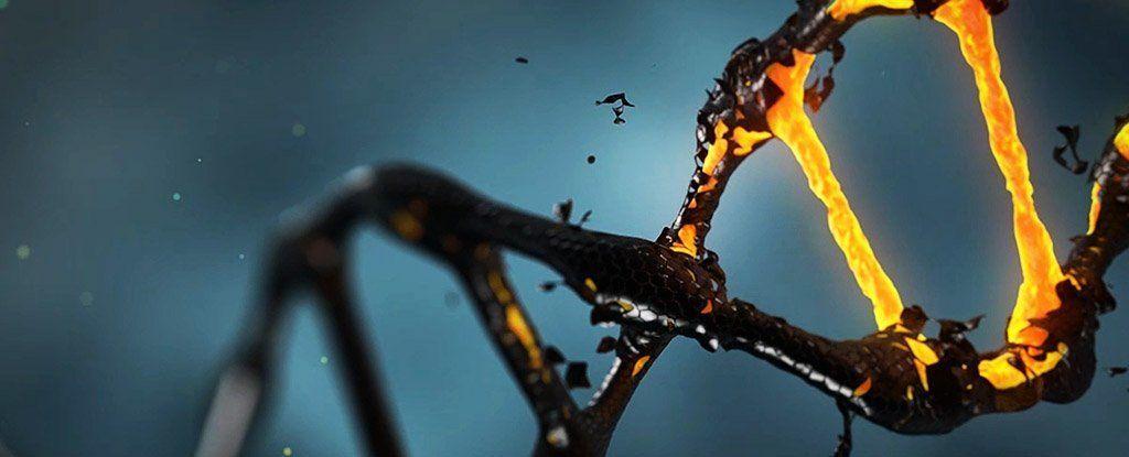 تعرف على الحمض النووي المظلم أو الجينات المستترة التي قد تغير من نظرتنا للتطور