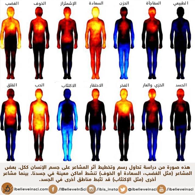 علماء يدرسون ويخططون تأثير المشاعر على جسم الإنسان