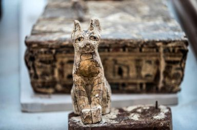 اكتشافات أثرية غنية وجديدة في مصر - اكتشاف أسدين محنطين يعود تاريخهما إلى نحو 2600 عام - مقبرة مليئة بتماثيل ومومياوات القطط في سقارة
