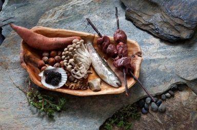 دور النظام الغذائي في تطورنا قبل 2 مليون سنة دور الحمية الغذائية في تطور البشر منذ ملايين السنين كيف أثرت نوعية الطعام على تطور الإنسان