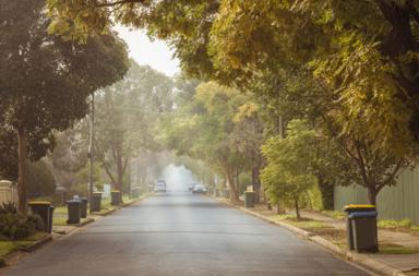 الأشجار تنمو أسرع وتموت أبكر وتمتص كميات أقل من الكربون - ارتفاع درجات الحرارة في العالم وزيادة مستويات غاز ثاني أكسيد الكربون في الغلاف الجوي