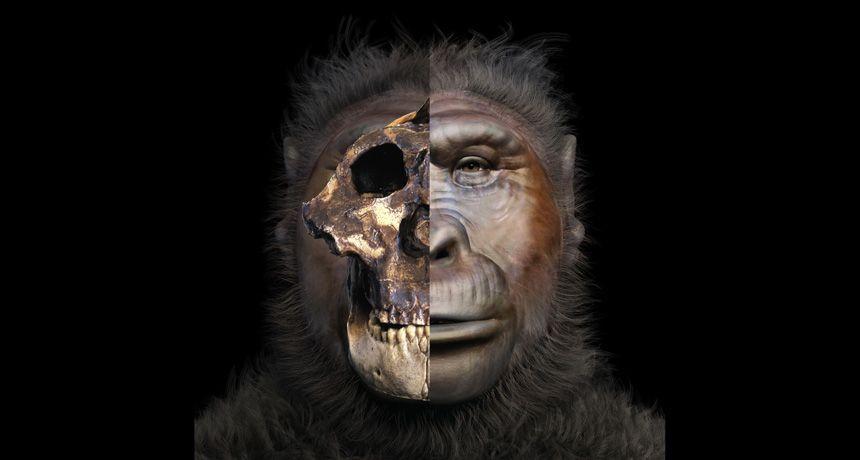العثور على نوع منقرض من البشر في الحمض النووي لسكان غرب إفريقيا المعاصرين