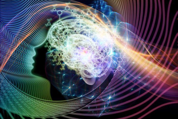 الأساس الفيزيائي للوعي: كيف يتشكل الوعي ؟