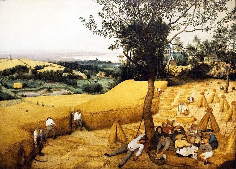 ثورة العصر الحجري الحديث