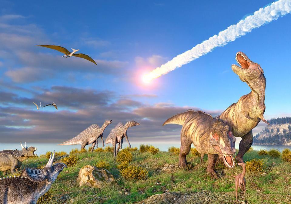 اليوم الأخير للديناصورات: لمحة عن كارثة الكويكب