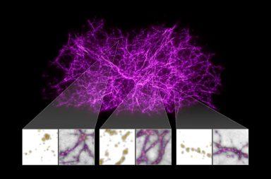 كم هو مظلم النسيج الكوني - يتخلل الكونَ نسيج واسع غير مرئي، يُنسج جزؤه اللولبي عبر الفضاء - تنظيم المادة في الفضاء - أكثر الزوايا ظلامًا في الكون