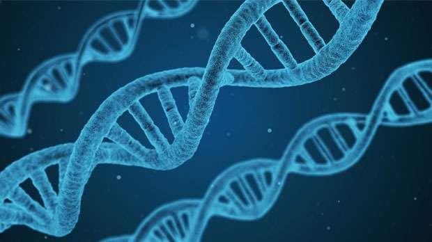 ما مدى قربنا من علاج السرطان باستخدام تقنية كريسبر للتعديل الجيني؟