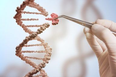 الطفرات الجينية التغيرات الجينية البشر القرود العليا