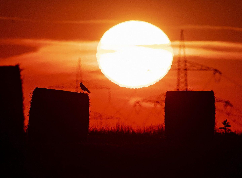 سنة 2020 تحطم رقمًا قياسيًّا عالميًّا في درجات الحرارة
