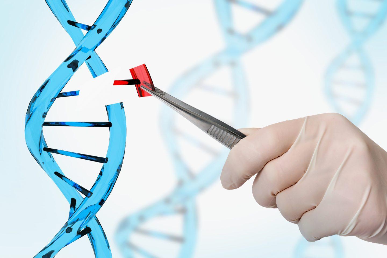 أخلاقيات التعديل الجيني