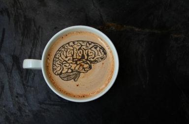 ما هي الأضرار التي تصيب الدماغ جراء شرب الكثير من القهوة ؟ هل لشرب القهوة أضرار؟ العلاقة بين استهلاك القهوة بكثرة والإصابة بالخرف وصغر حجم الدماغ