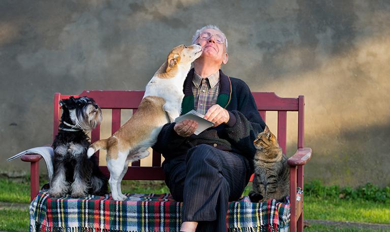 الحيوانات الأليفة تحمي كبار السن من الانتحار