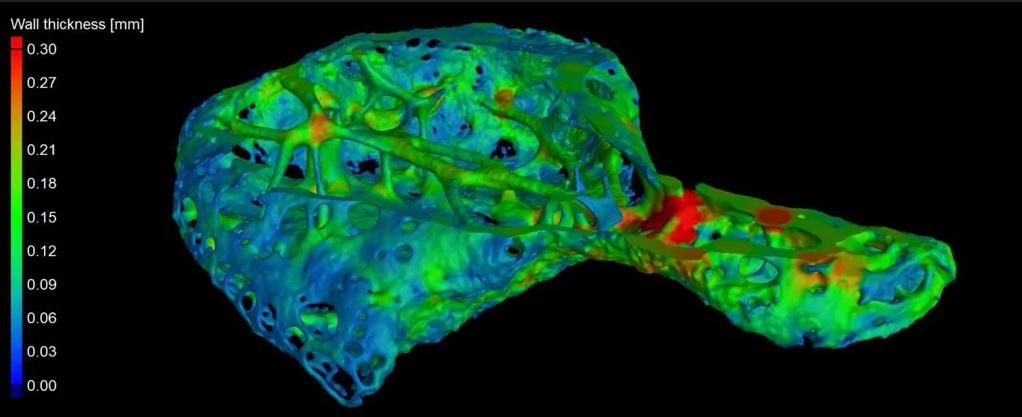 اكتشاف عظمة في قلب الشمبانزي تثير الكثير من التساؤلات - تكون عظم صغير في نسيج قلب عدة أفراد من قردة الشمبانزي - القردة العليا