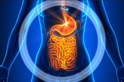 التهاب الغشاء الداخلي للبطن الصفاق أنا أصدق العلم