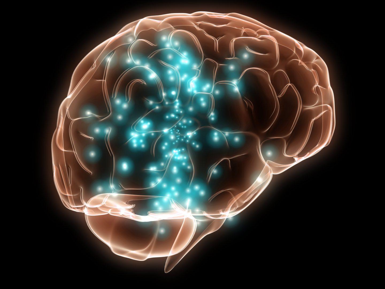 خمس حقائق مذهلة عن الدماغ